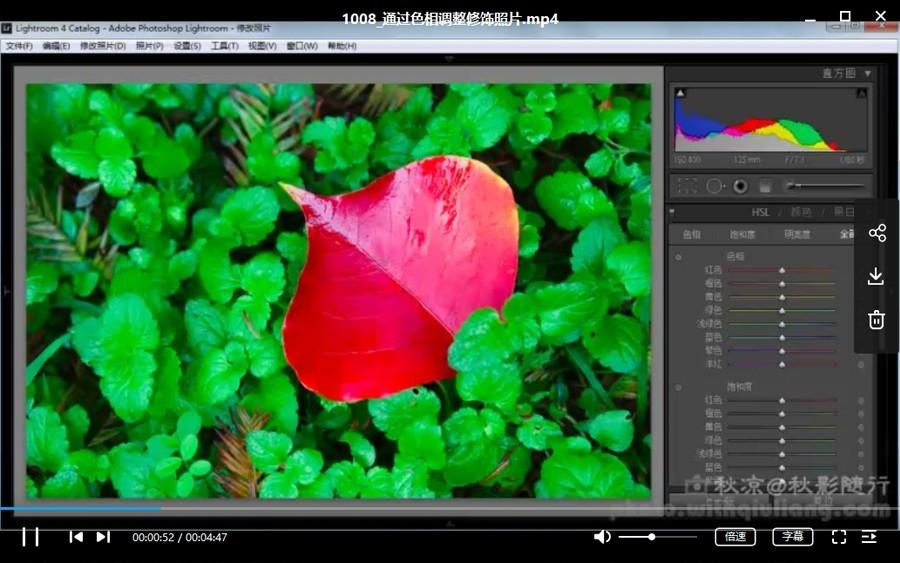 零基础学习Lightroom软件——Lr基础课程